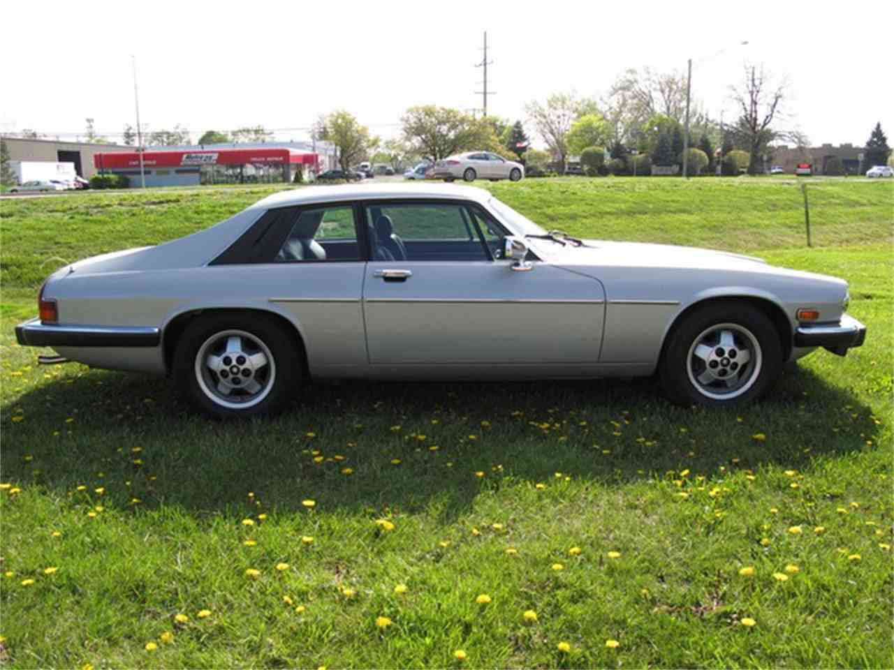 Large Picture of '85 XJS - LCPJ