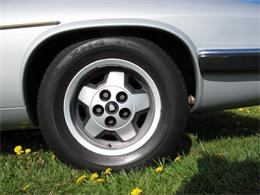 Picture of '85 XJS - LCPJ