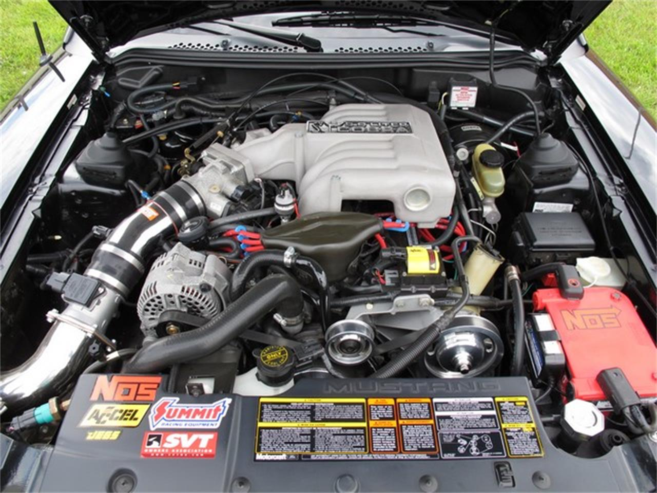 Large Picture of '94 Mustang - LCPU