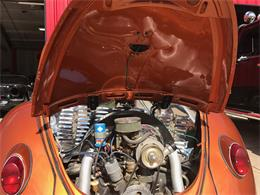 Picture of '65 Beetle - LCYY