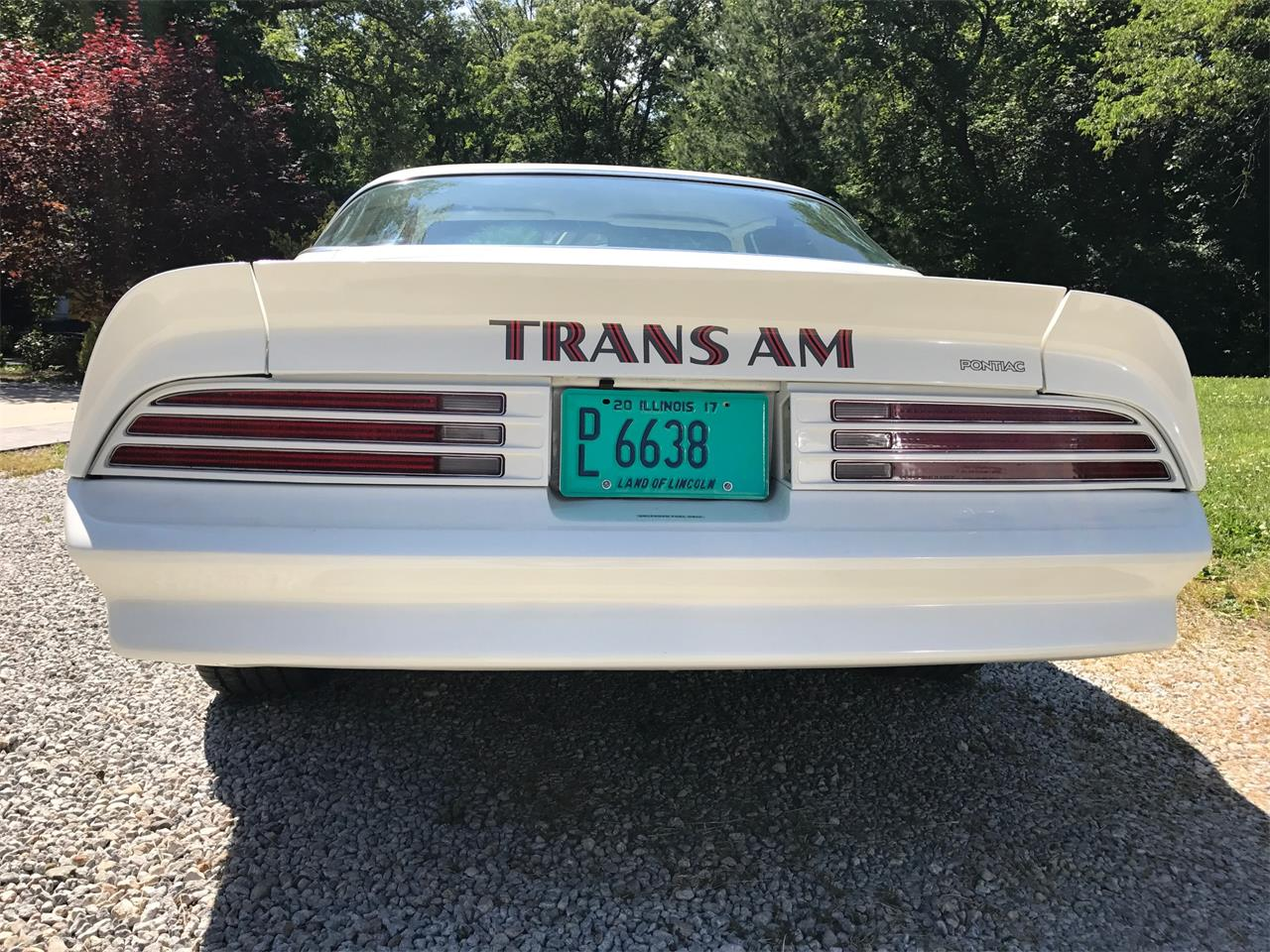 Large Picture of '78 Firebird Trans Am - LCZC