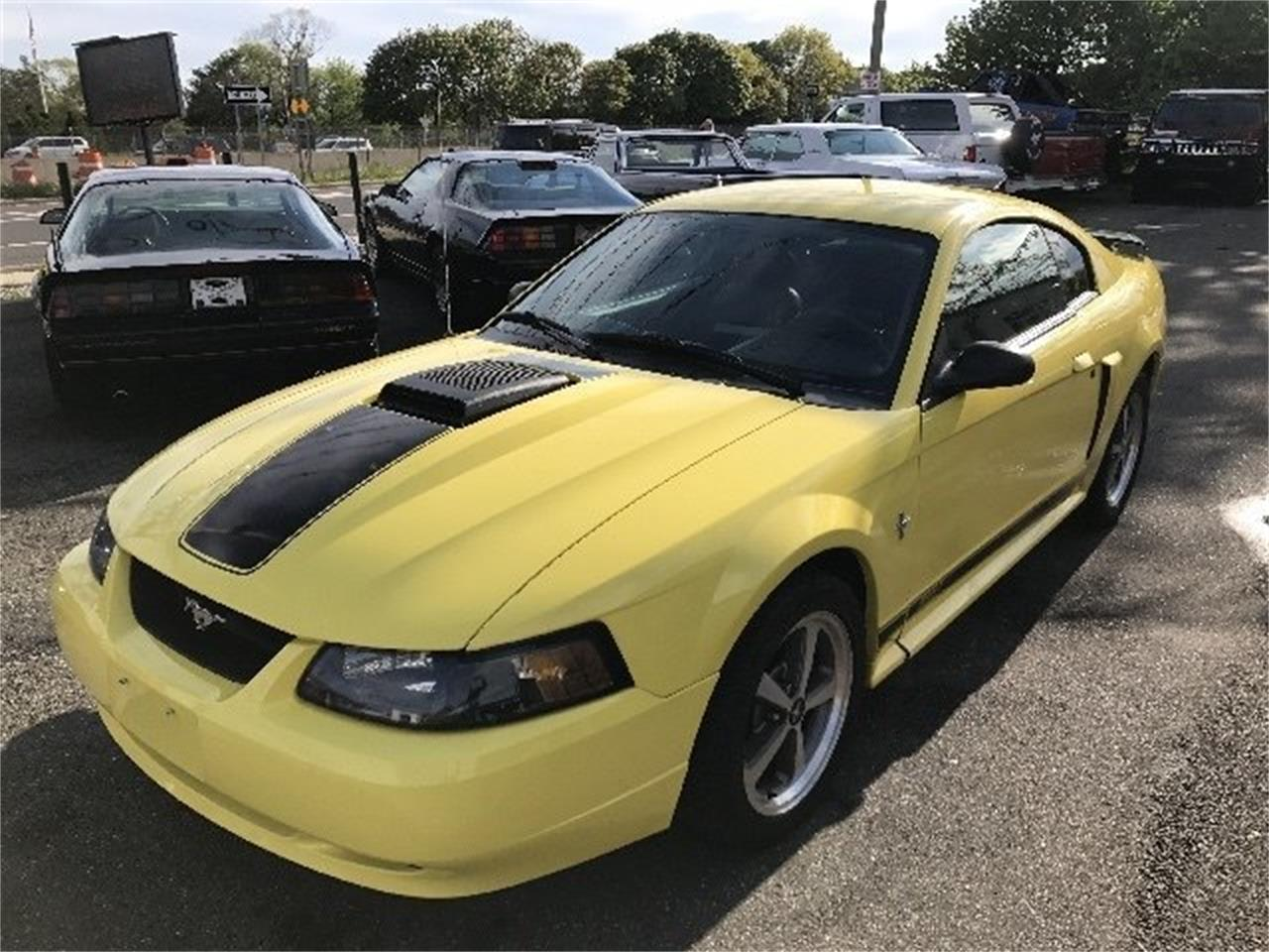 2003 Ford Mustang Mach 1 for Sale | ClassicCars.com | CC-997238