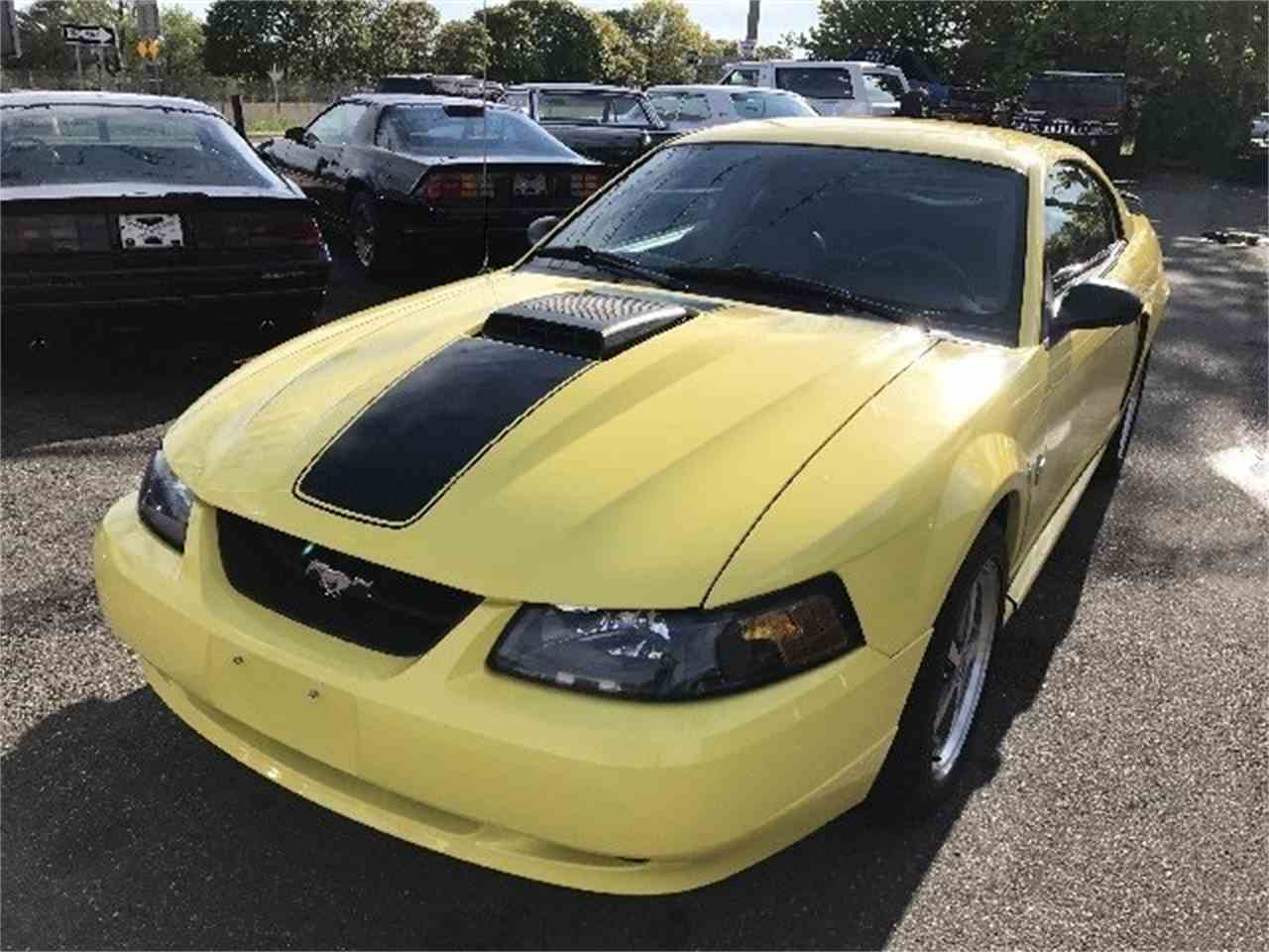 Large Picture of '03 Mustang Mach 1 - LDH2