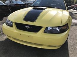 Picture of 2003 Ford Mustang Mach 1 located in West Babylon New York - $10,900.00 Offered by Hollywood Motors - LDH2