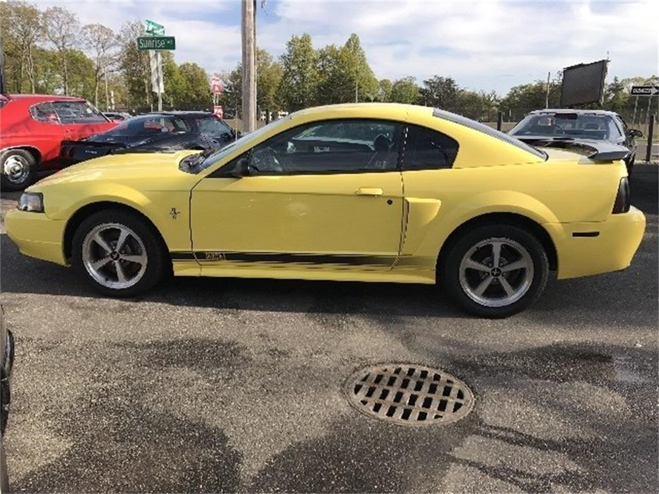 Large Picture of 2003 Ford Mustang Mach 1 located in West Babylon New York Offered by Hollywood Motors - LDH2