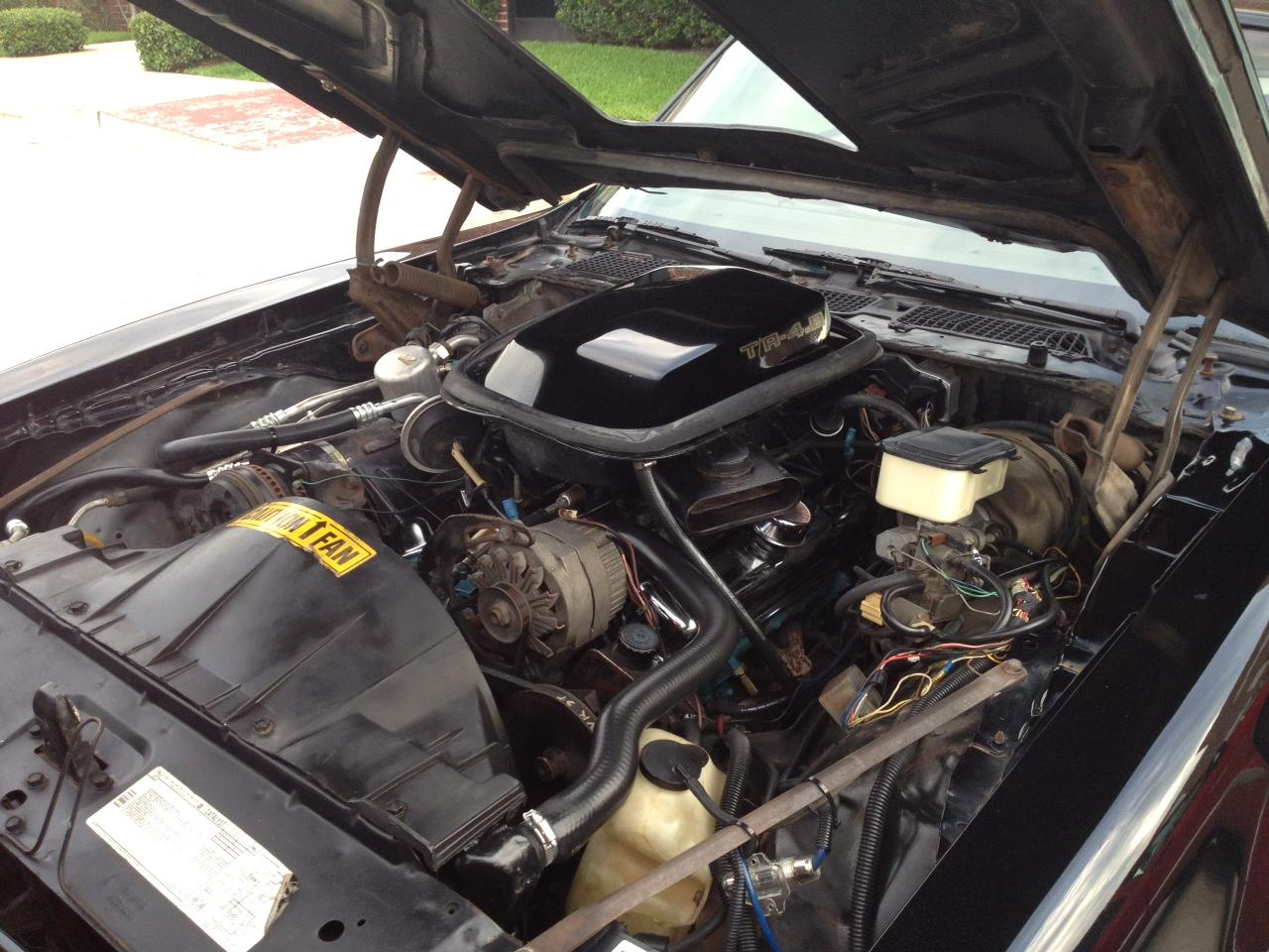 Large Picture of 1981 Firebird Trans Am - $16,000.00 - LDTR