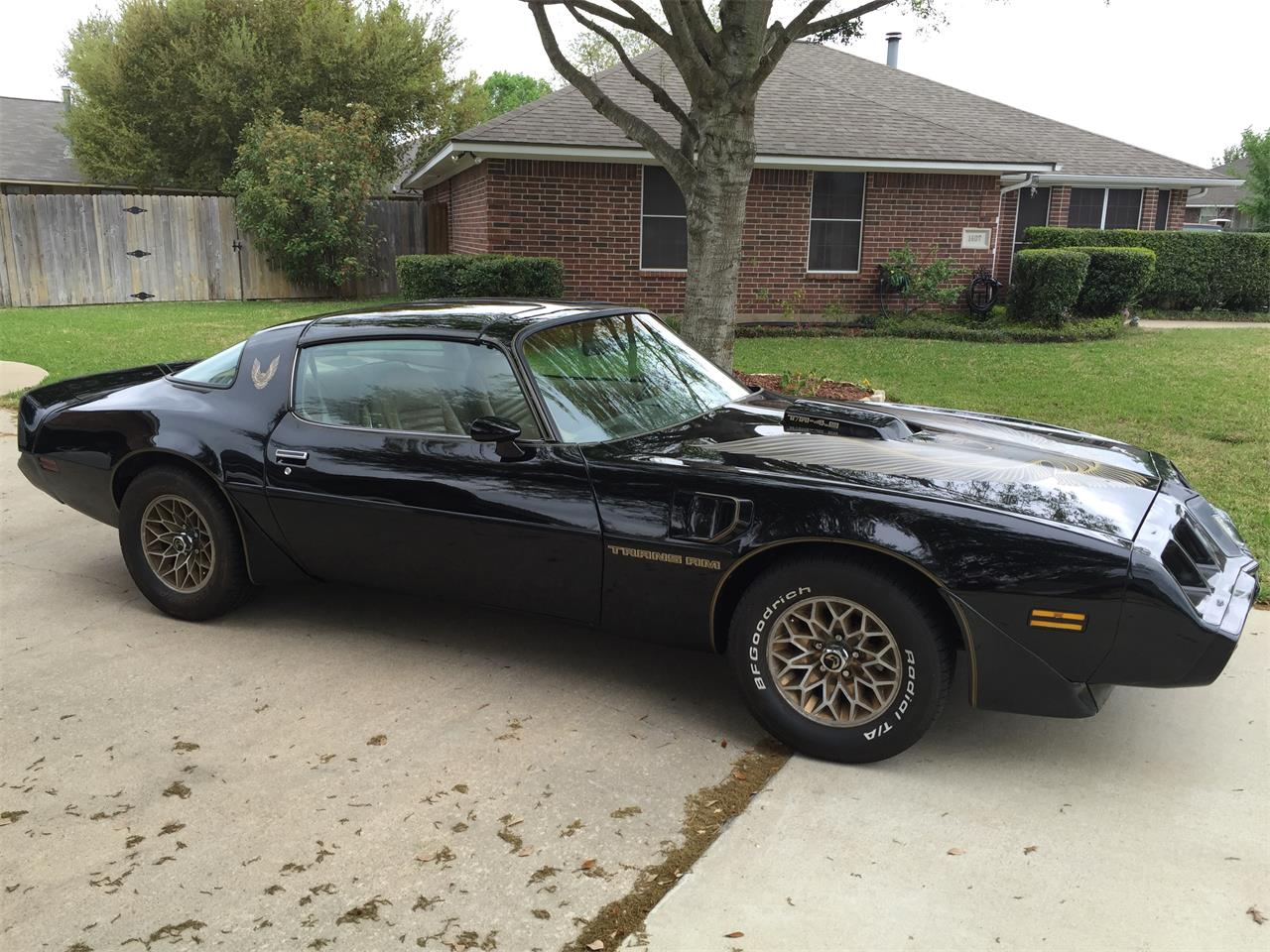 Large Picture of 1981 Firebird Trans Am located in College Station Texas - LDTR