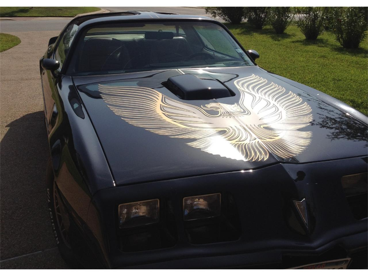 Large Picture of 1981 Pontiac Firebird Trans Am Offered by a Private Seller - LDTR