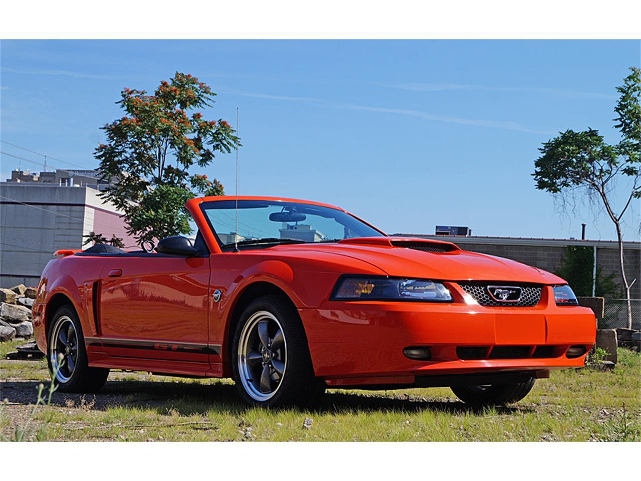 Large Picture of '04 Mustang GT - LE7K