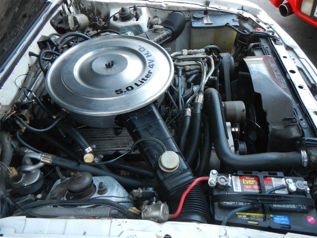 Large Picture of '84 Mustang GT350 - LEF7