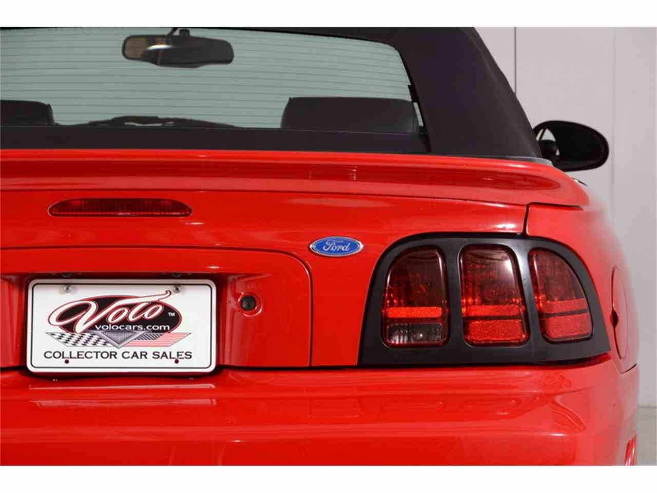 Large Picture of '97 Mustang - LEPU