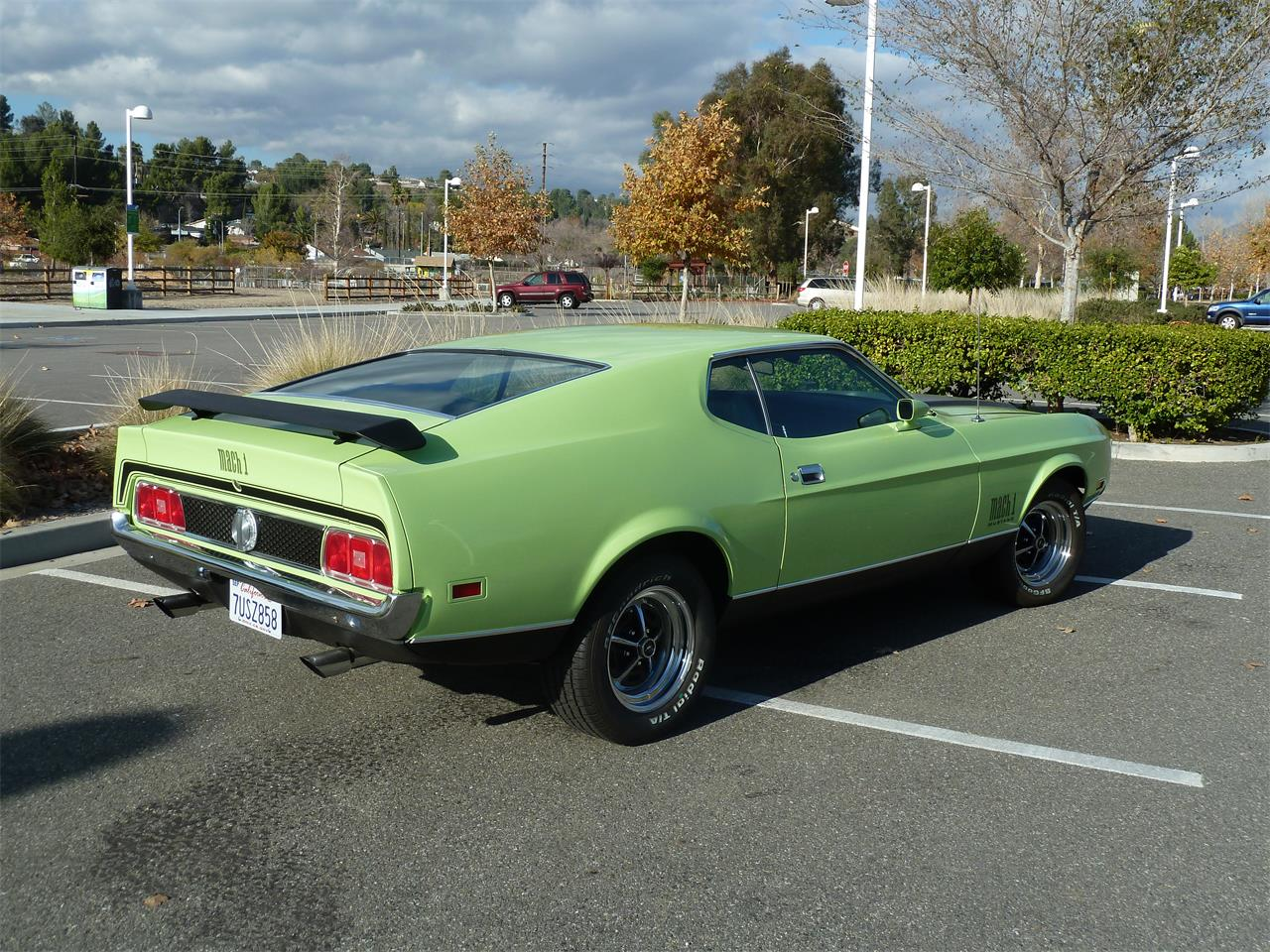 Large Picture of '71 Ford Mustang Mach 1 - LEX9