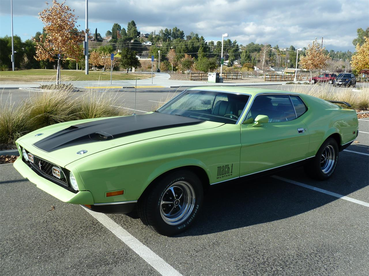 Large Picture of Classic '71 Ford Mustang Mach 1 Offered by a Private Seller - LEX9
