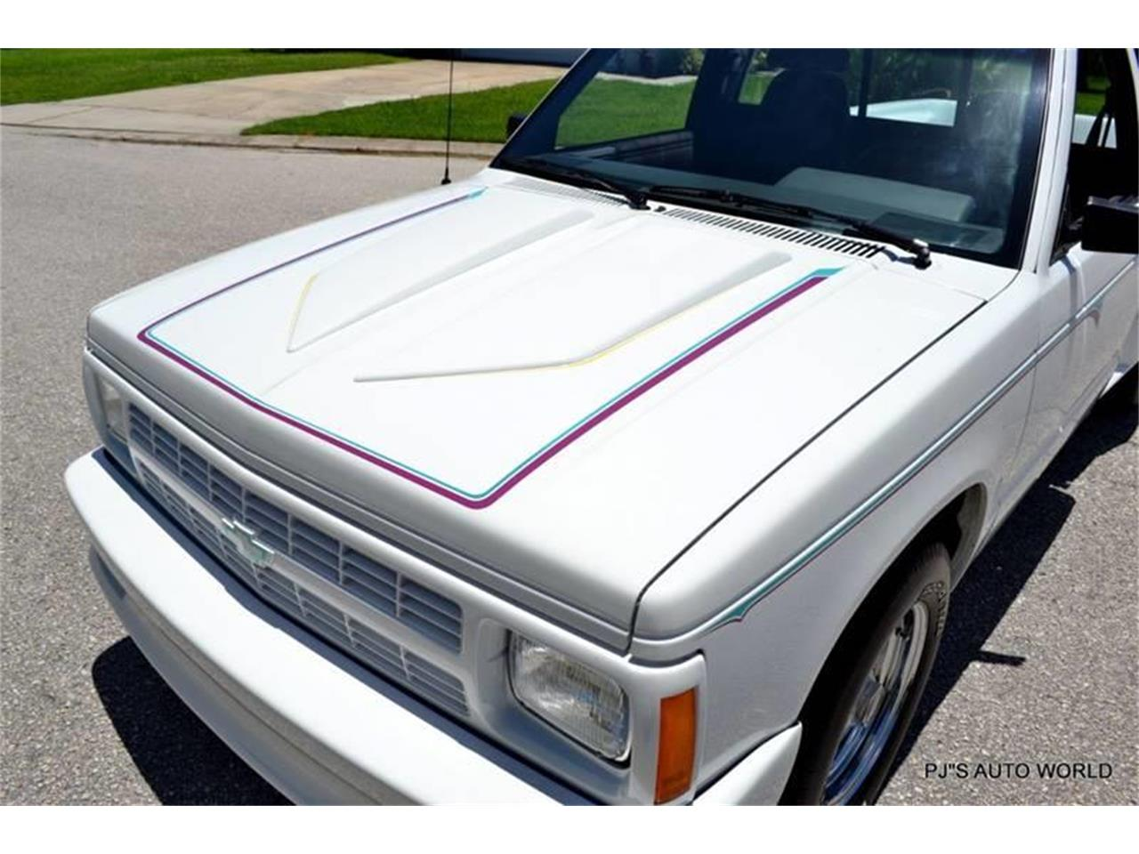 Large Picture of '92 S10 - LEYN