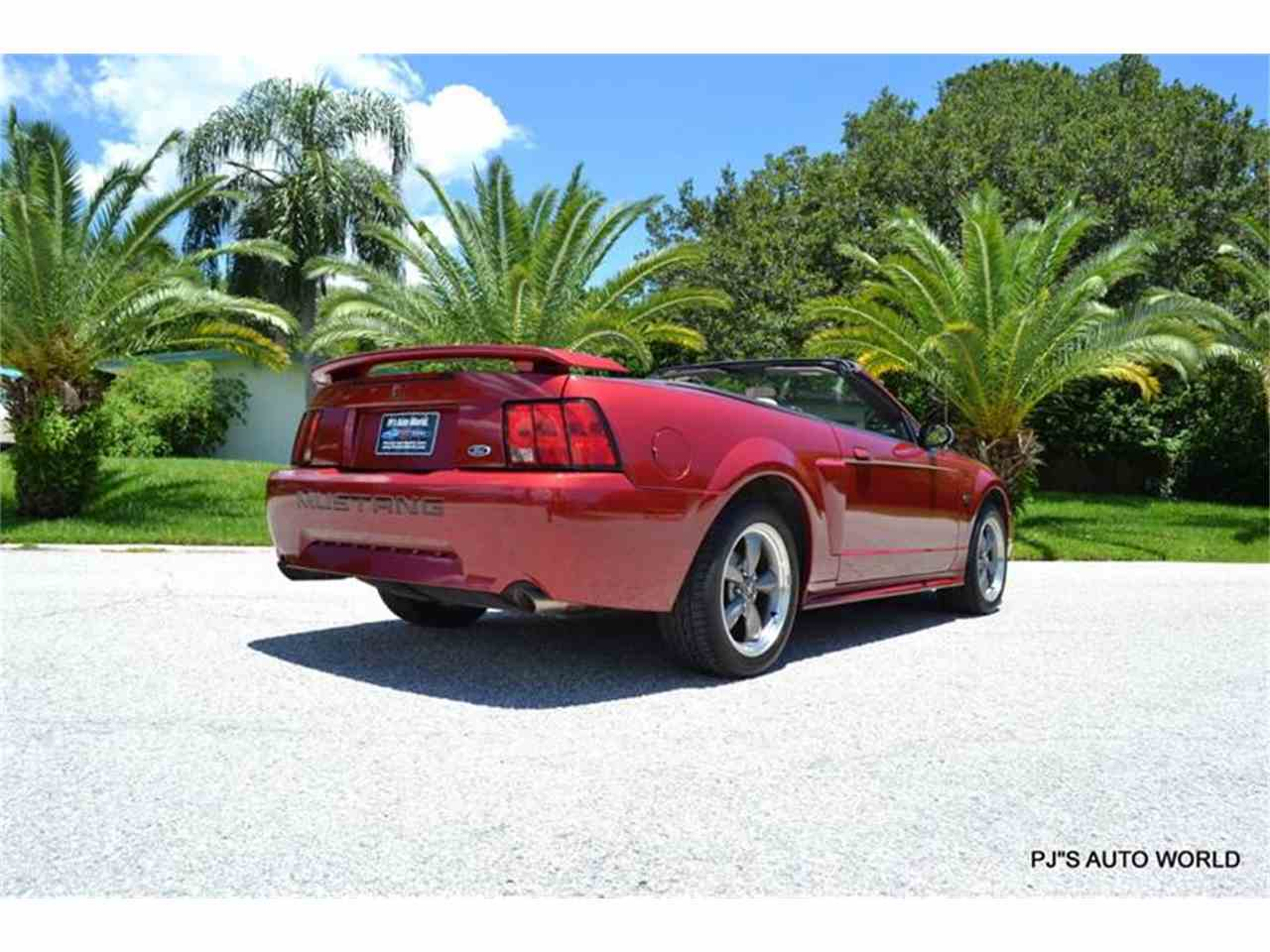 Large Picture of '03 Mustang - LEYO