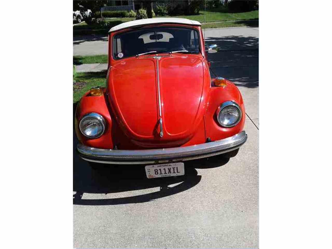 Large Picture of '71 Beetle - LF0B