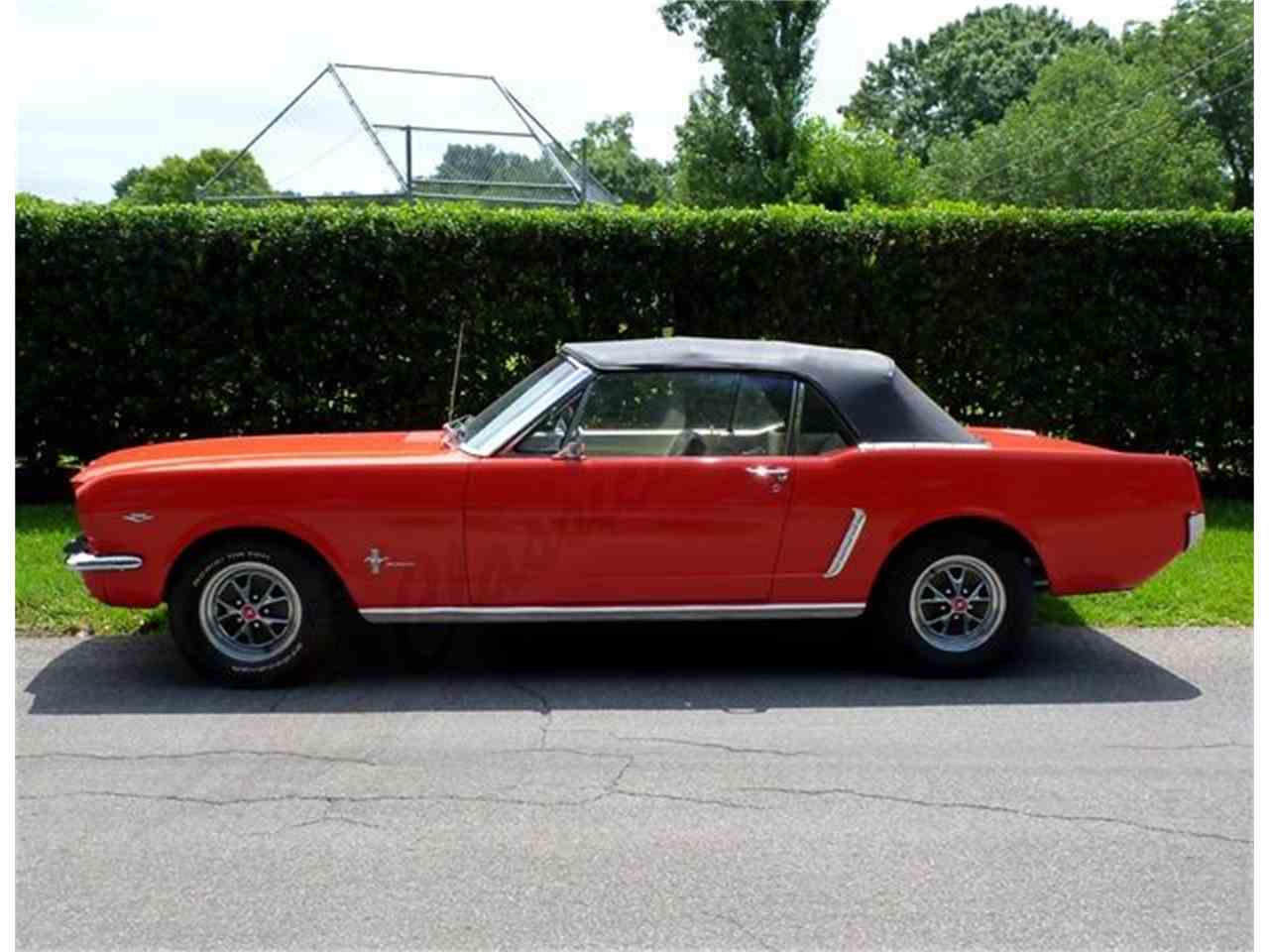 Large Picture of '64 Mustang - LF1Z