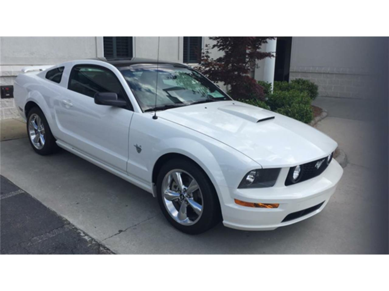 2009 ford mustang gt 45th anniversary edition for sale classiccars