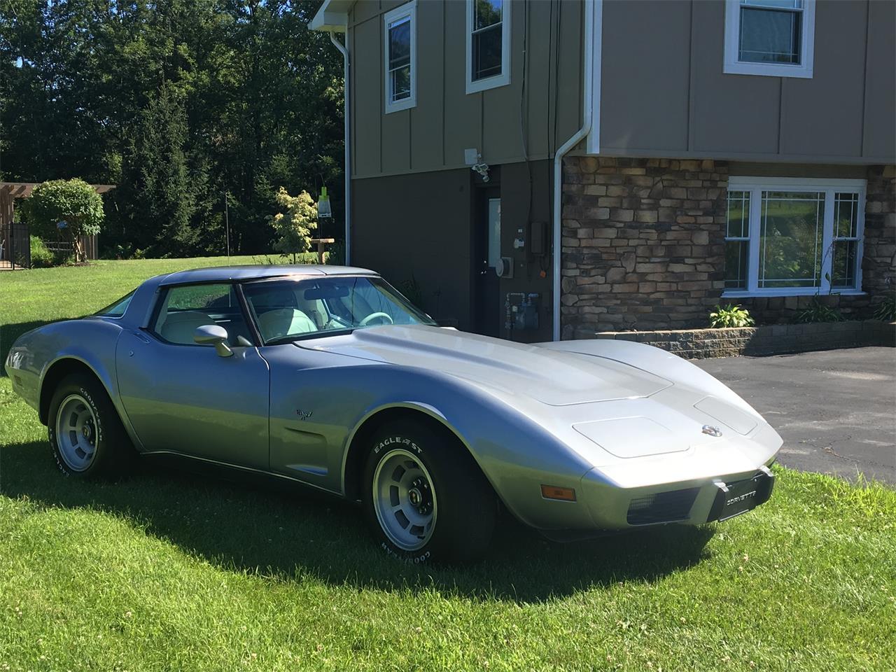 Large Picture of '78 Corvette - LFBP